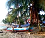 Puerto Viejo CR 2013